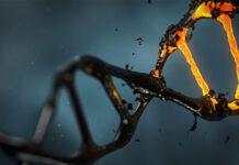 Co warto wiedzieć na temat badań genetycznych po poronieniach